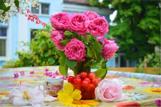 Бесплатные фото ваза,розы,букет,цветы,стол,ягоды,сливы,кружка,натюрморт