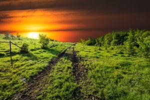 Бесплатные фото закат,поле,дорога,деревья,трава,небо,природа