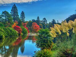 Бесплатные фото Шеффилд Парк,Sheffield Park,Англия,Великобритания,пруд,парк,водоём