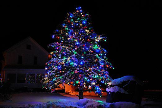 Фото бесплатно новогодняя ёлка, ночь, гирлянды