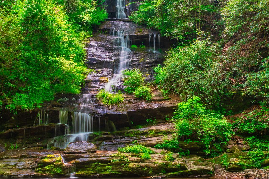 Фото бесплатно North Carolina, National Forest, водопад, река, скалы, камни, деревья, природа, пейзаж, пейзажи - скачать на рабочий стол