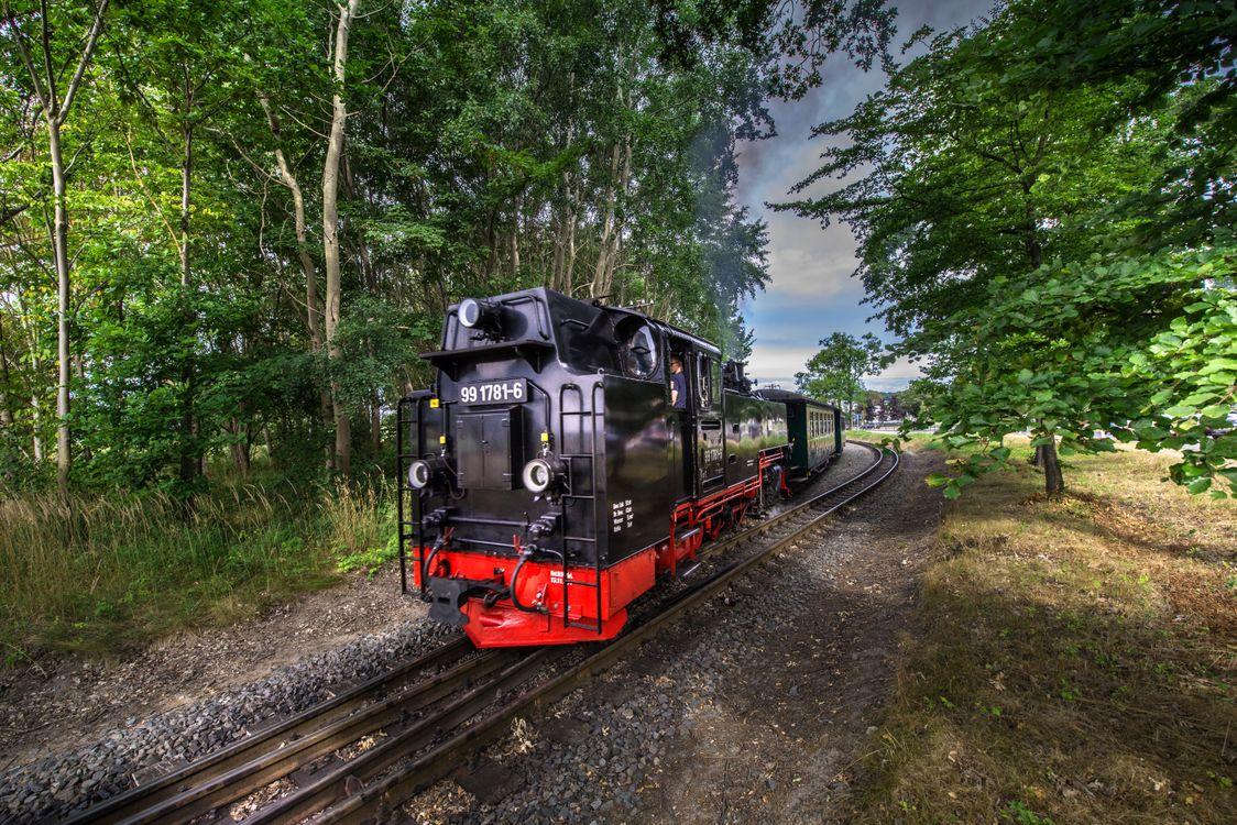 Фото бесплатно узкоколейка, поезд, railway, Rasender Roland, Island Rugen, Germany, пейзажи