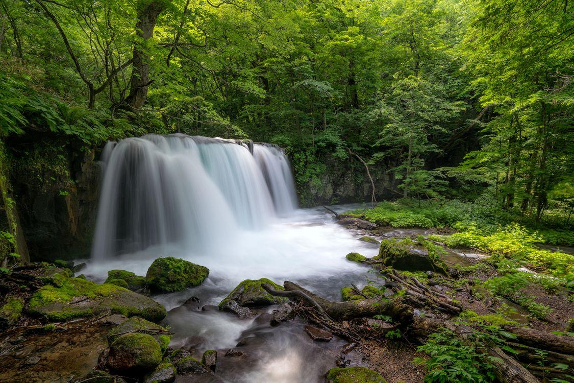 Фото бесплатно лес, деревья, камни, водопад, пейзаж, природа, пейзажи