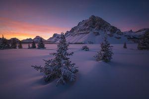 Фото бесплатно Национальный парк Банф, деревья, горы