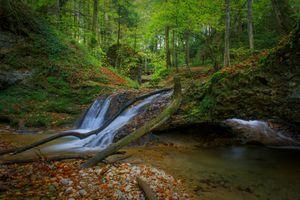 Фото бесплатно водопад, речка, лес