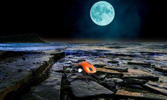Бесплатные фото ночь,море,луна,скалистый берег,божья коровка,art