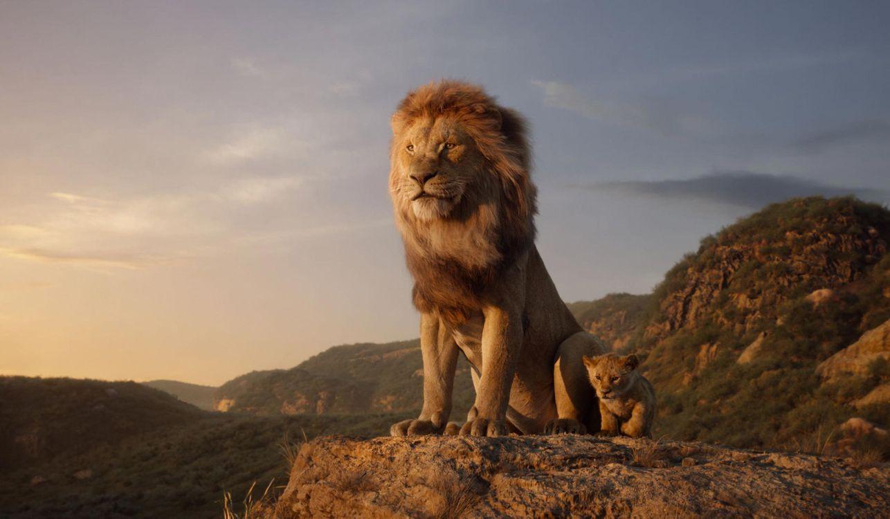 Фото бесплатно Король лев, Муфаса, маленький Симба, лев и львенок - на рабочий стол