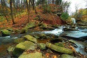Фото бесплатно осень, река, камни, водопад, лес, деревья, природа, пейзаж