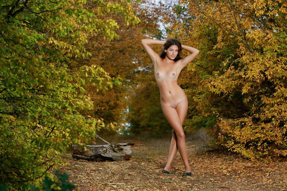 Camp autumn nude — 10