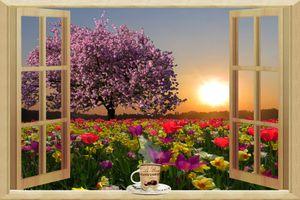 Фото бесплатно весна, окно, поле