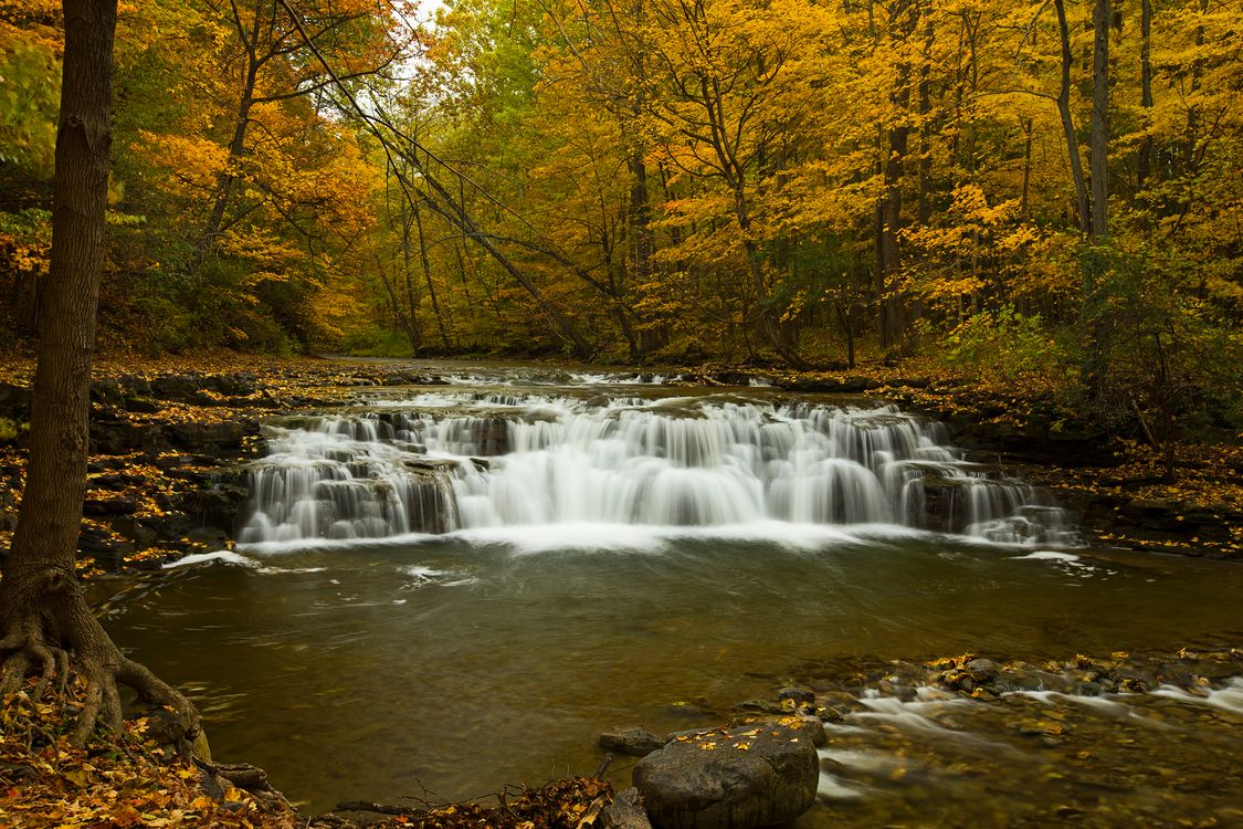 Обои осень, водопад, лес, скалы, деревья, водоём, природа, поток, вода, камни, пейзаж на телефон | картинки природа