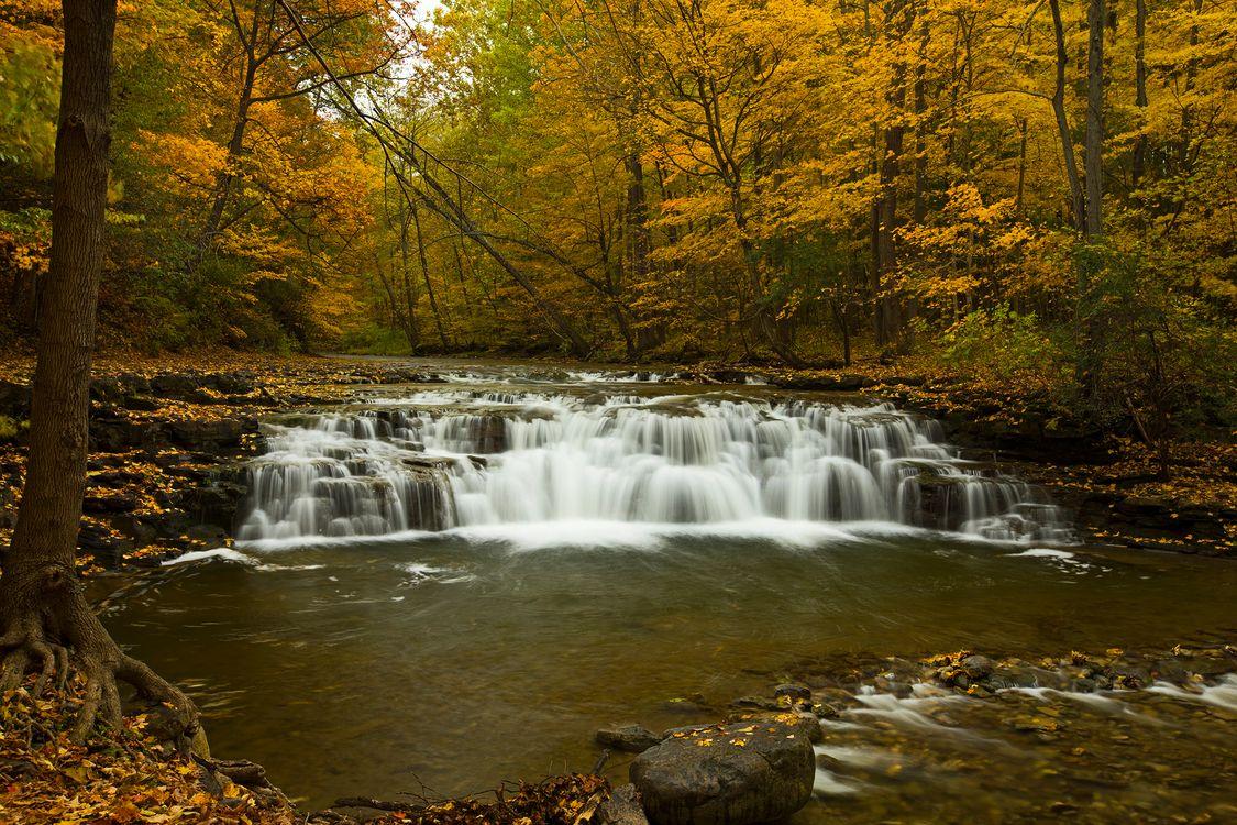 Фото бесплатно природа поток, камни, пейзаж - на рабочий стол