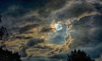 Бесплатные фото закат,небо,облака,луна,верхушки деревьев,природа,пейзаж