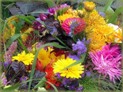 Фото бесплатно красивые цветы, букет, цветочный