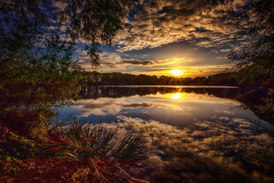 Фото бесплатно закат, озеро, деревья, лес, природа, отражение, небо, облака, пейзаж, пейзажи