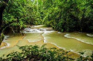 Бесплатные фото Азия, Лаос, Луанг Прабанг, водопады Куанг, речка, лес, деревья
