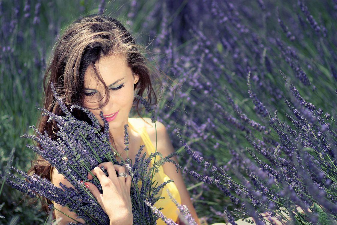 Фото бесплатно девушка, букет, цветы, лаванда - на рабочий стол