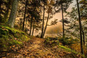 Заставки осень, озеро, туман