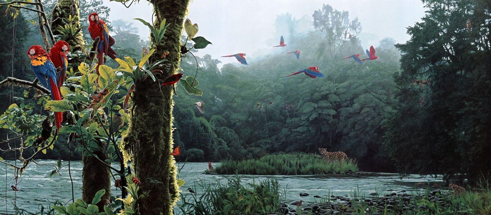 Фото бесплатно птицы, цветы, фантазия - на рабочий стол