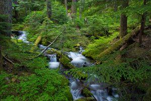 Фото бесплатно река, поток, пейзаж