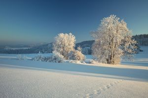 Бесплатные фото Линдберг,Байеришер-Вальд,Бавария,Германия,зима,снег,сугробы