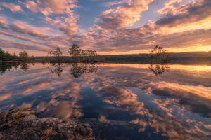 Фото бесплатно деревья, небо, отражение
