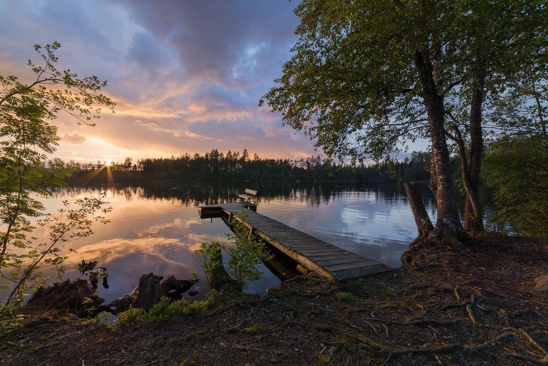Фото бесплатно закат, озеро, причал, мостик, деревья, пейзаж, пейзажи