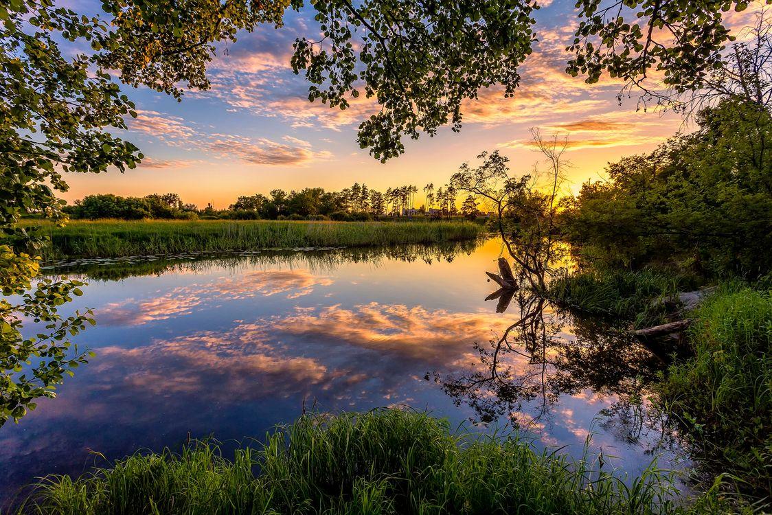Фото бесплатно закат, река, небо, облака, отражение, деревья природа, пейзаж, пейзажи