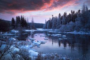 Заставки природа, закат, деревья