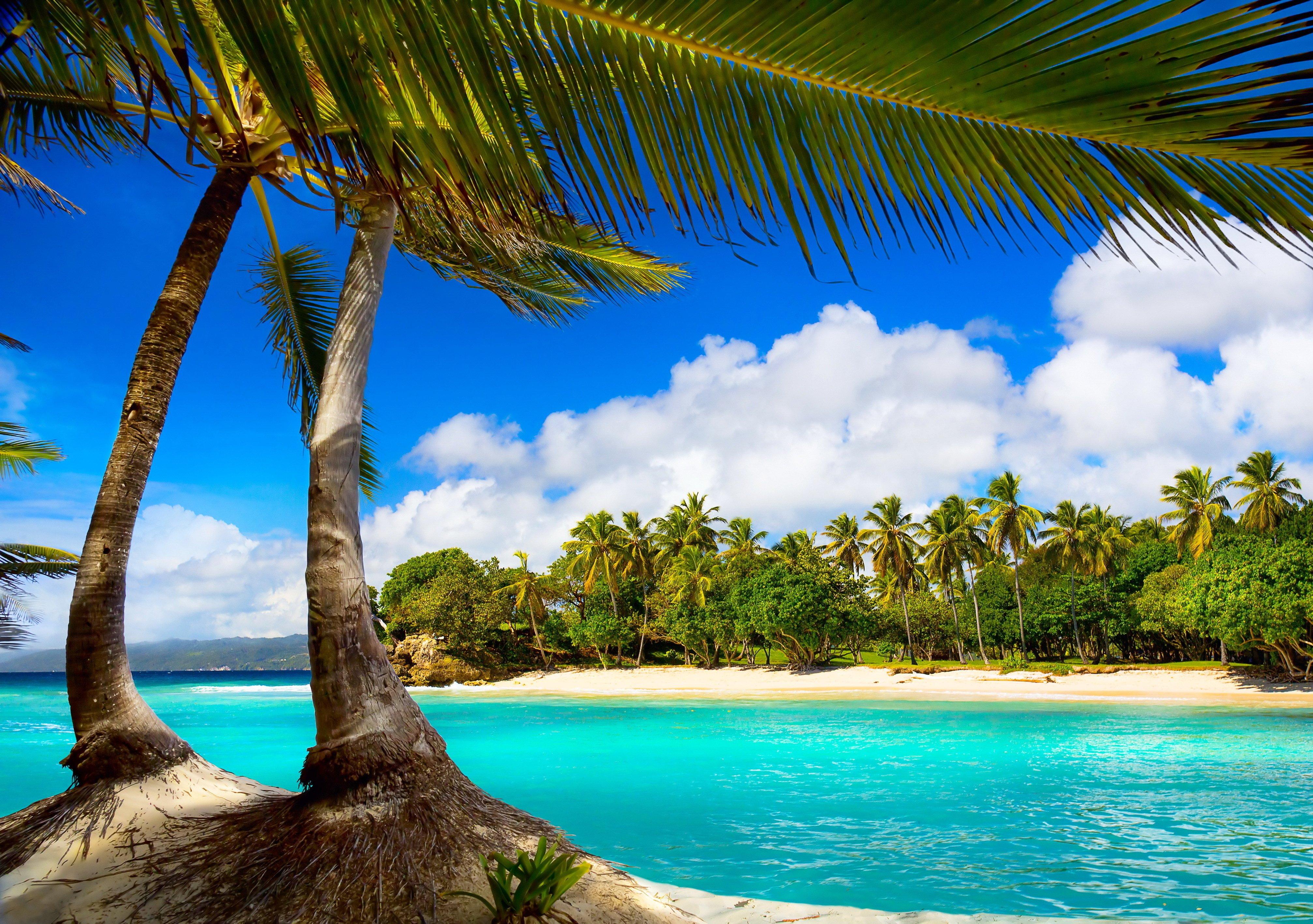 Free Photo Vacation Summer Beach To Desktop