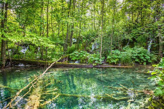 Фото национальный парк плитвицкие озера, хорватия на рабочий стол