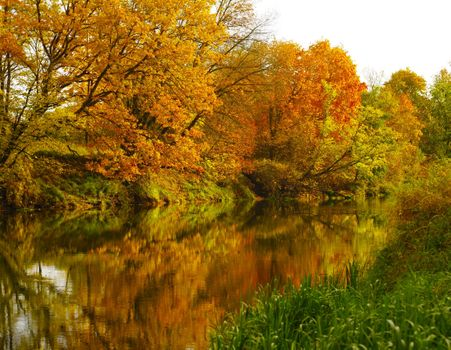 Заставки осень,река,деревья,листопад,вода
