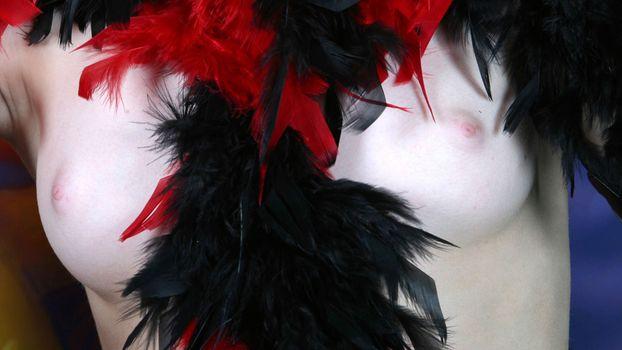 Бесплатные фото красотки,крупным планом,сиськи,перья