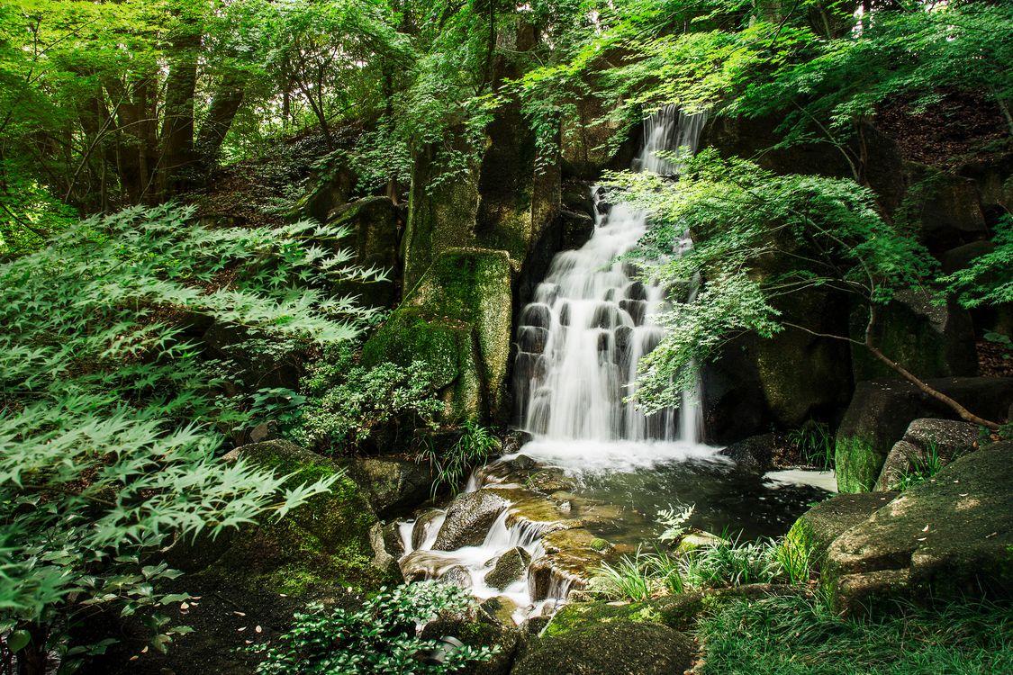 Обои лес, парк, водопад, каскад, камни, деревья, пейзаж картинки на телефон