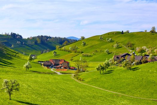 Фото бесплатно красоты, ферма, трава
