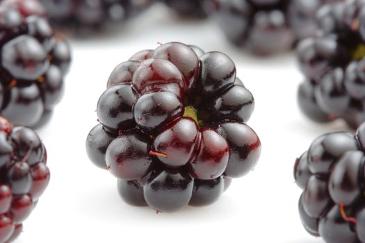 Blackberries on a white background · free photo