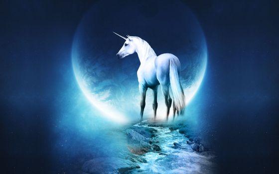 Фото бесплатно животное, лошадь, магическое