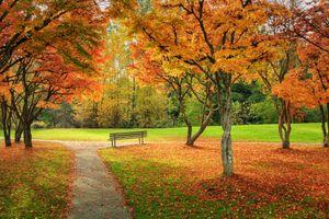 Заставки осенние краски, парк, осенние листья