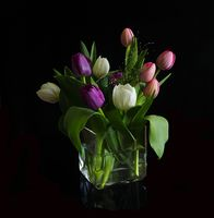 Заставки тюльпаны, цветы, ваза