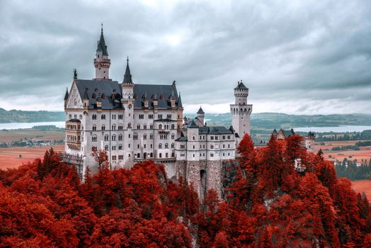 Neuschwanstein and autumn purple · free photo
