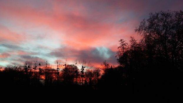 Фото бесплатно синий, утро, природа