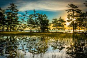 Бесплатные фото закат,рассвет,солнечные лучи,озеро,деревья,небо,силуэты