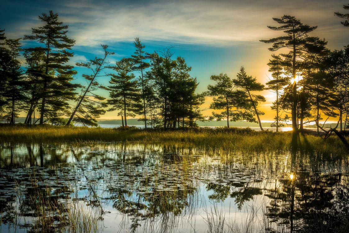Обои закат, рассвет, солнечные лучи, озеро, деревья, небо, силуэты, отражение, природа, пейзаж на телефон | картинки пейзажи