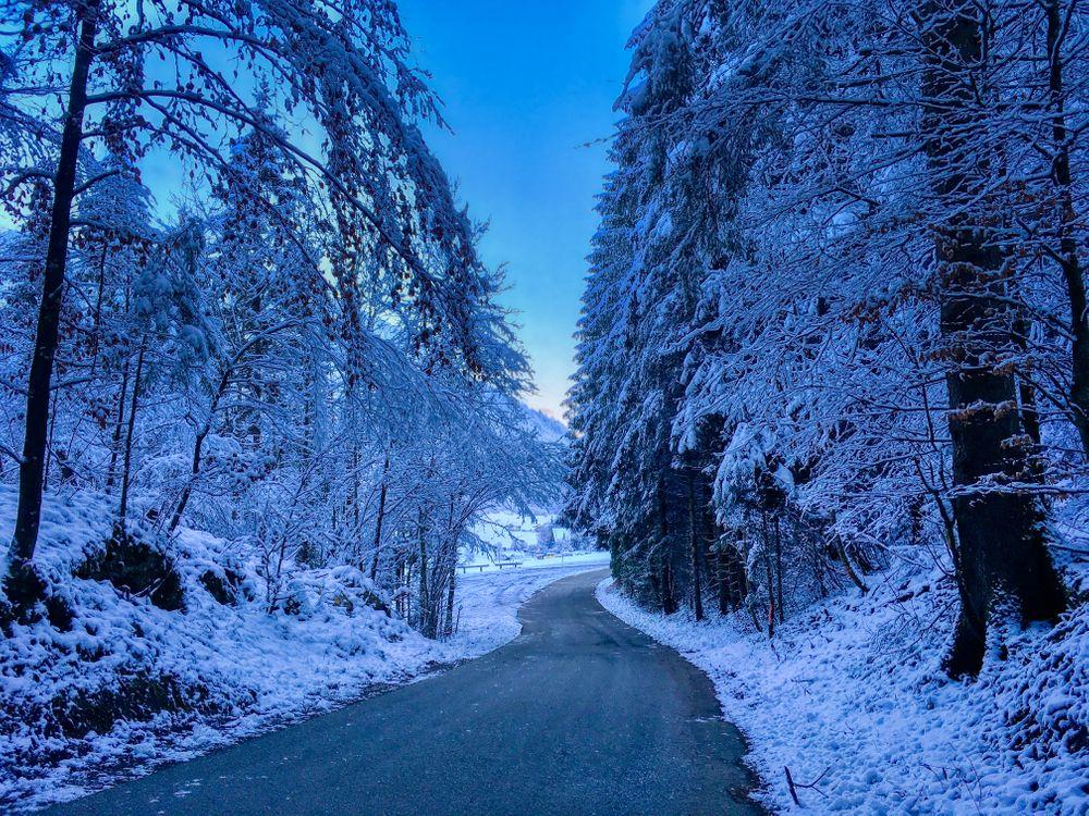 Фото бесплатно Зимний лес возле Брайтенау, Бавария, Германия, зима, дорога, деревья, пейзаж, пейзажи