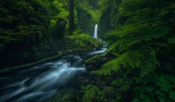 Фото бесплатно Oregon s Columbia River Gorge, водопад, речка