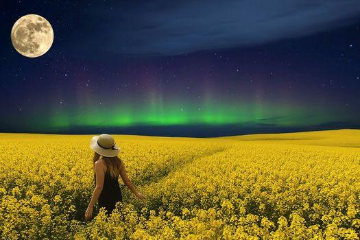 Photo free field, stars, dream