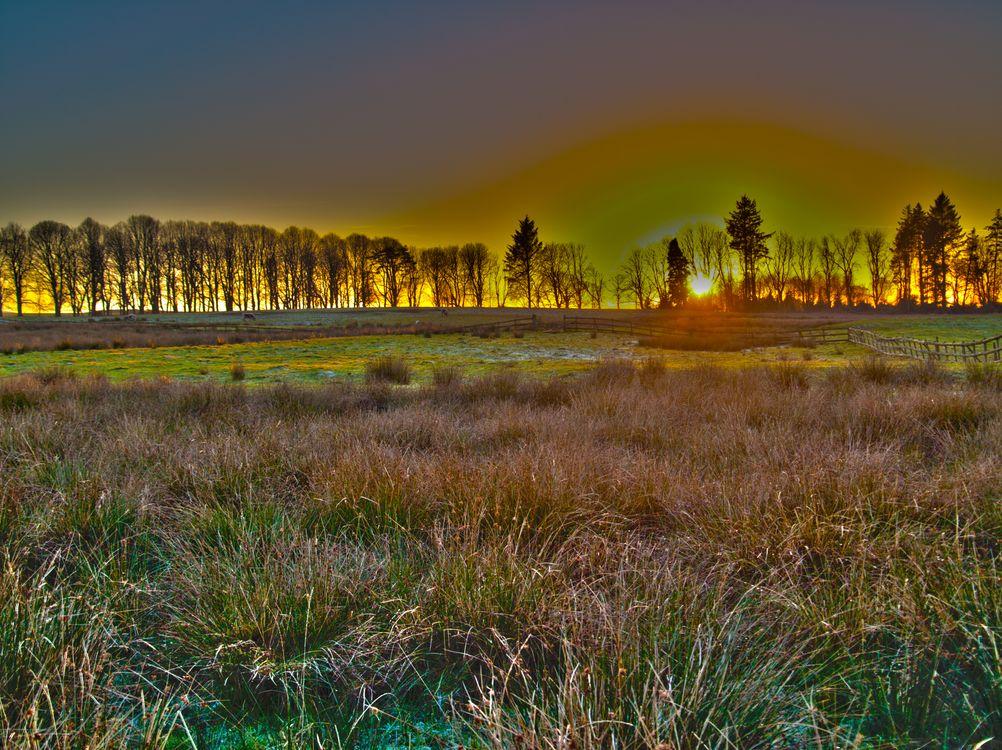 Фото бесплатно Cumbria, поле, трава - на рабочий стол