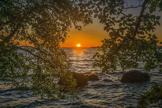 Фото бесплатно Германия, Мекленбург-Передняя Померания, Балтийское море, закат, вода, волны, ветки деревьев, пейзаж