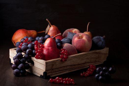 Fruit on a black background · free photo