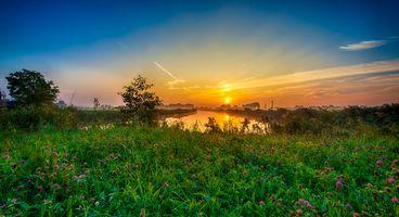 Фото бесплатно закат, река, берег, трава, цветы, клевер, небо, деревья, зарница, природа, пейзаж